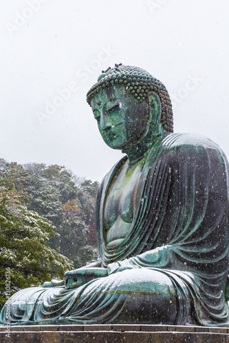 Foto op Canvas Japan The Great Buddha in Kamakura.It's snowing.A pigeon rests on the head of a great Buddha. Located in Kamakura, Kanagawa Prefecture Japan.