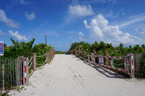 Plakat Plaża w Miami Beach