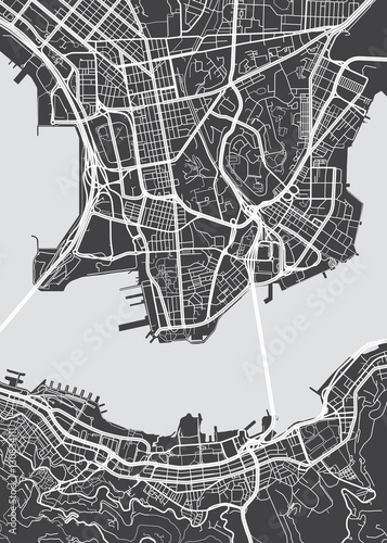 Fotografie, Obraz Vector detailed map Hong Kong