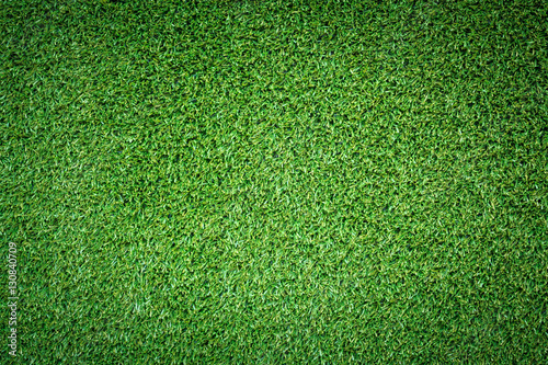 Green Fake grass background Canvas Print