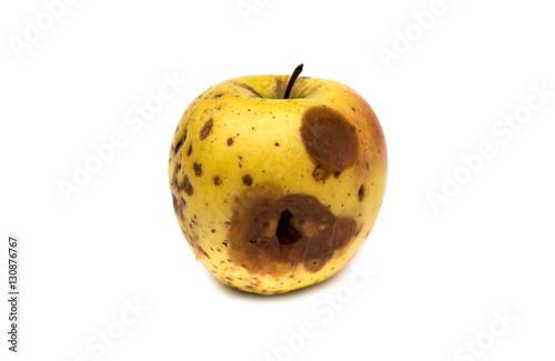 Rotten apple Canvas-taulu