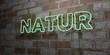 NATUR - Glowing Neon Sign on stonework wall - 3D rendered royalty free stock illustration.  Can be used for online banner ads and direct mailers..