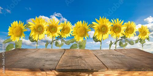 Fototapeta drewniany stół ze słonecznikami w tle obraz