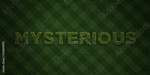 Fotografering  MYSTERIOUS - fresh Grass letters with flowers and dandelions - 3D rendered royalty free stock image