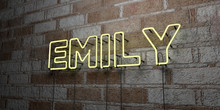 EMILY - Glowing Neon Sign On Stonework Wall - 3D Rendered Royalty Free Stock Illustration.  Can Be Used For Online Banner Ads And Direct Mailers..