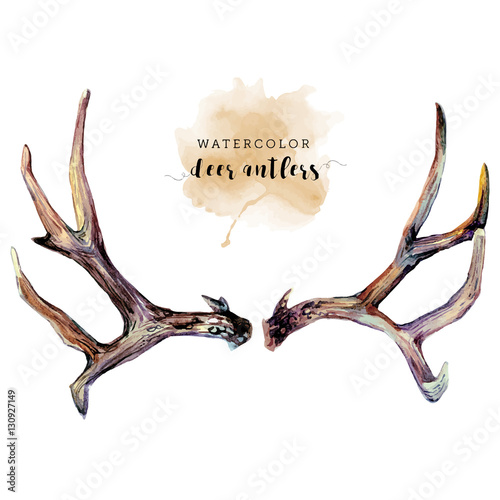 Fotografie, Tablou Watercolor Deer Antlers