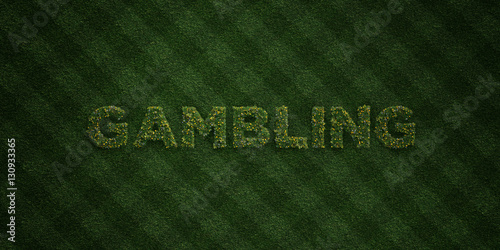 фотография  GAMBLING - fresh Grass letters with flowers and dandelions - 3D rendered royalty free stock image