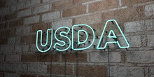 USDA - Glowing Neon Sign On St...