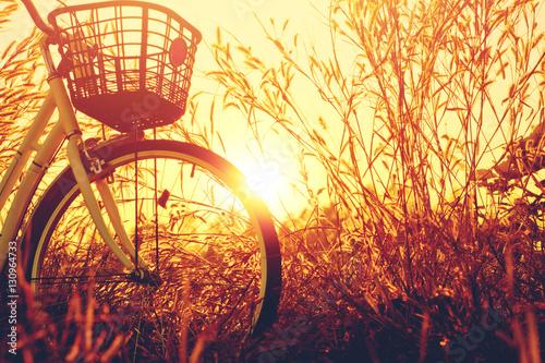 Fotobehang Fiets vintage bike with beautiful landscape image on sunset.