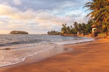 Sunset At Sandy Beach With Palm Trees On The Coast Of Indian Ocean Near Beruwala, Sri Lanka