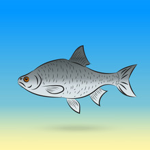 Stylized Fishe Sea Fish By Hand Line Art Eps 10 Vector