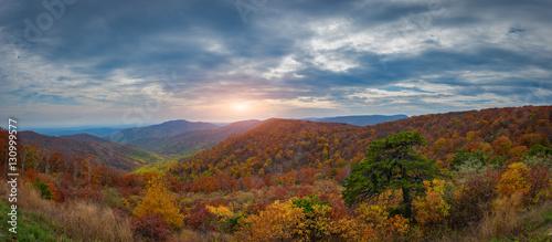 Fotografie, Obraz  Shenandoah Overlook in Autumn from Skyline Drive