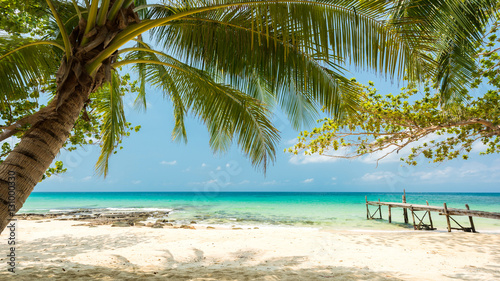 Montage in der Fensternische Tropical strand Beautiful exotic beach with coconut tree, Located Koh Kood Island, Thailand