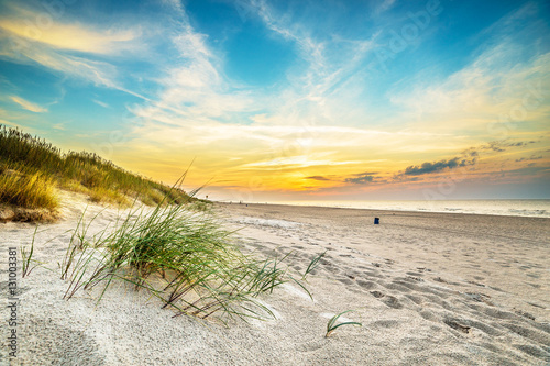 Foto auf AluDibond Strand Sand dunes against the sunset light on the beach in northern Poland