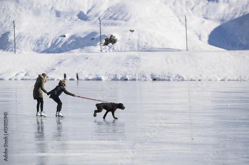 Fotografie, Tablou  Zugefrorener Lago Bianco auf der Berninapasshöhe, Hund zieht zwei Personen, Grau