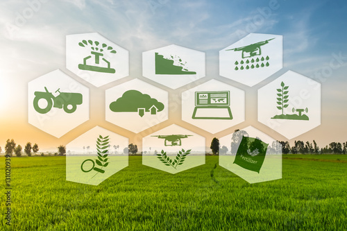 Photo  Precision Agriculture and Agritech concept