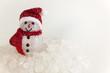 Snow Man on a pile of white crystalline