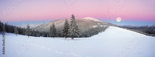 Poster Rose clair / pale frosty sunrise in the Carpathian mountains