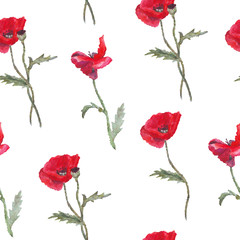 FototapetaFloral pattern with red watercolor poppies and leaves