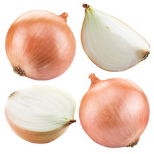 Bulb Onion Isolated On A White Background.