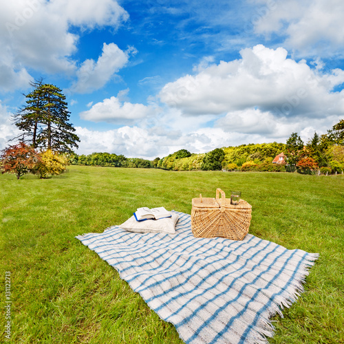 Picnic blanket, cushion, basket & pillow in a rolling field Poster