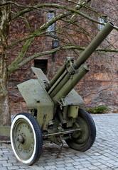 Fototapeta Militaria Armata