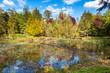 canvas print picture - Beaver habitat in neighborhood stormwater retention pond