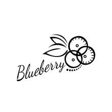 Vector Logo Blueberry