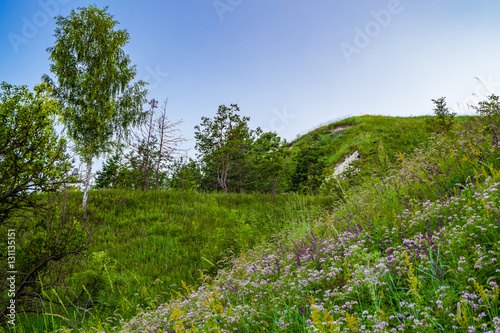 View of the chalk hill and the ancient forest archaeological monument - Krapivinskaya settlement, Belgorod region, Russia.