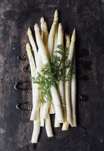White Asparagus And Herb Sprig