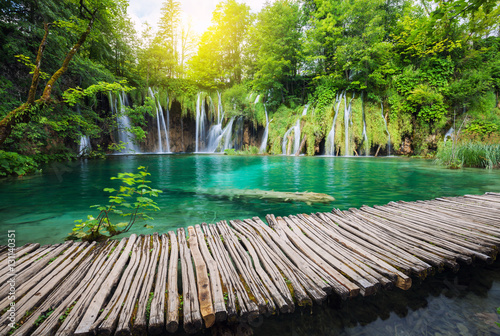 Poster Landscapes Beautiful waterfall in summer green forest