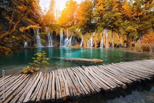 Poster Landscapes Beautiful waterfall in autumn color forest