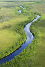Aerial View Of River Flowing Through Peat Bogs And Taiga, Sjaunja Bird Protection Area, Greater Laponia Rewilding Area, Lapland, Norrbotten, Sweden, June 2013.