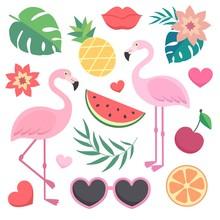 Vector Set Of Tropical Illustr...