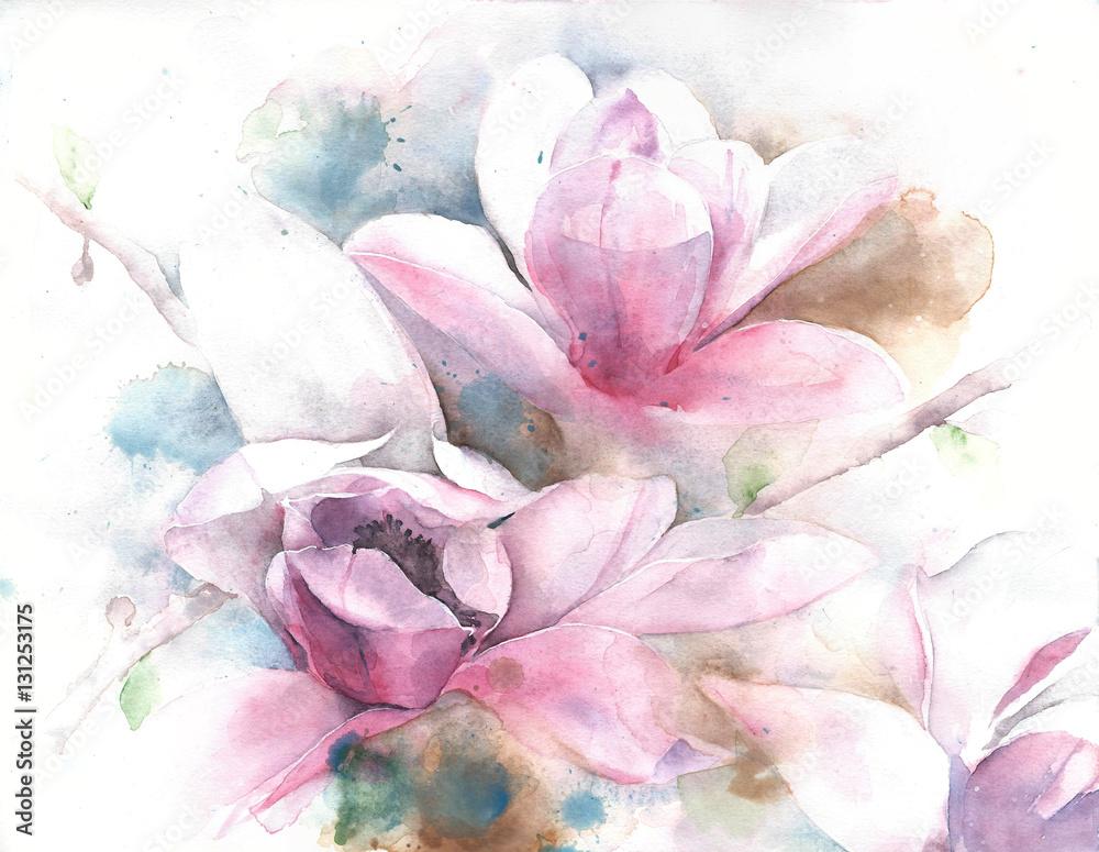 Magnoliowy kwiatu drzewa tulipanu magnolii akwareli obrazu ilustraci drzewny kartka z pozdrowieniami
