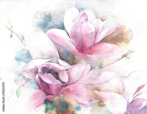 Fotografie, Obraz  Magnolia flower tree tulip magnolia watercolor painting illustration greeting ca