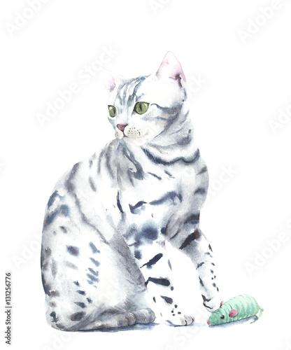 Kot figlarka bawić się z zabawkarską akwarela obrazu ilustracją odizolowywającą na białym tle