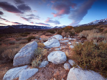 Buttermilk Hill In Bishop California