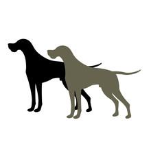 Pointer Dog Vector Illustration Style Flat