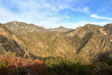 Angeles National Forest, Calif...