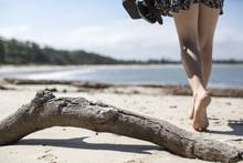 Woman Walking Past Driftwood O...