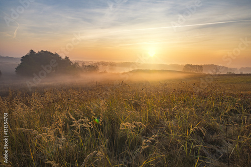 misty and sunny morning in the countryside Canvas Print