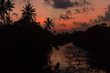 sunset on the river silhouette of trees and palm with reflection