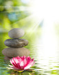 Image of stones and lotus flower on the water close-up,