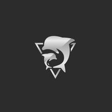 Triangle Shining Silver Dolphin Logo