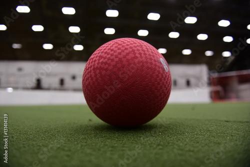 Valokuva  Dodgeball