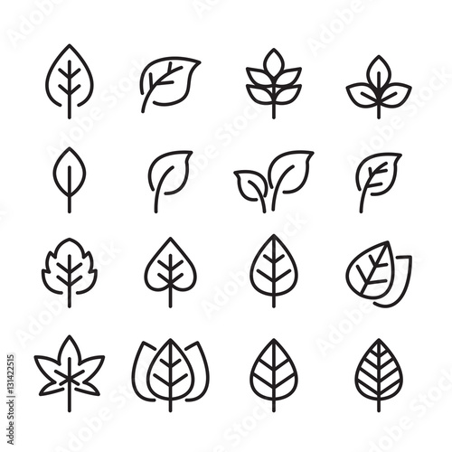 leaf line icon set Wall mural
