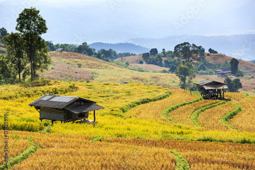 Fotobehang Rijstvelden Small huts in terraced rice field