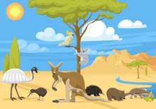 Australia Wild Life Vector Illustration.