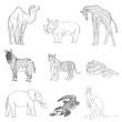 Vector illustration. Image rhino kangaroo, giraffe, elephant, zebra, snake, crocodile, camel, tiger a black line.